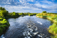 Beauty of river on a sunny day. Royalty Free Stock Photo