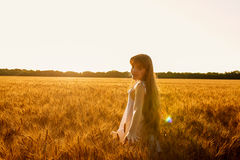 Beauty Romantic Girl Outdoors Royalty Free Stock Images