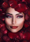Beauty in Rose Petals Royalty Free Stock Image