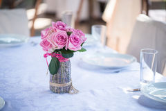 Beauty of roses Royalty Free Stock Photography