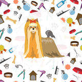 Beauty salon for animals Royalty Free Stock Photography