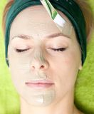 Beauty salon. Cosmetician applying facial mask at woman face. Stock Photos