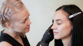 Beauty saloon. the cosmetician in black rubber gloves keep a special brush and comb eyebrows. Master corrects the shape. Of the eyebrows. Professional care for stock video