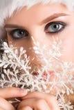 Beauty santa Royalty Free Stock Photo