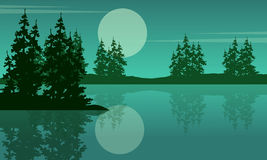 Beauty scenery lake with spruce silhouettes Stock Photo