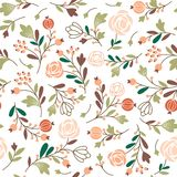 Beauty seamless floral pattern Stock Image