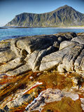 Beauty Seashore, Lofoten Islans Stock Photos