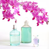 Beauty set with orchid. A beauty set with perfume, body oil and a beautiful orchid Stock Photos