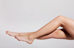 Beauty sexy legs. Royalty Free Stock Photos