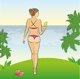 Beauty, sexy  woman in bikini standing on the shore of the beach. Vector illustration Royalty Free Stock Images