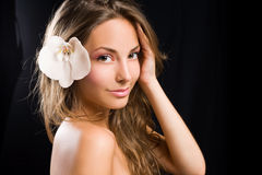 Beauty shot of a gorgeous young brunette woman. Royalty Free Stock Image