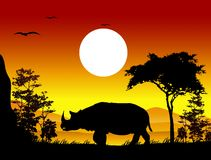 Beauty silhouette of rhino Royalty Free Stock Photography