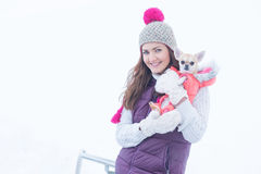 Beauty smiling girl with little dog chihuahua Royalty Free Stock Photos