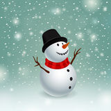 Beauty snowman Stock Photos