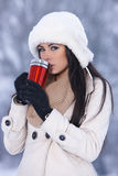 Beauty on snowy outdoors Stock Photography