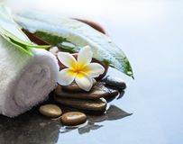 Beauty and spa set on black rustic background.  stock photo