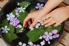 Beauty Spa treatment and product for female hand spa, Thailand. select and soft focus.  stock photo