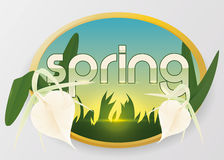 Beauty Spring Sunrise with Exotic Orchids, Vector Illustration Royalty Free Stock Images