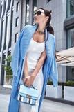 Beauty stylish woman natural make-up brunette woman Stock Image