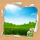 Beauty summer day Stock Photography