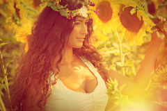 Beauty in sunflower field Stock Images