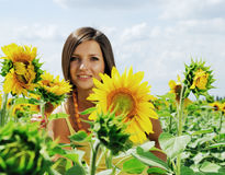 Beauty and sunflowers Stock Photo