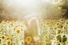 Beauty sunlit woman on yellow sunflower field Freedom and happiness concept royalty free stock image