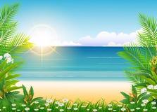 Beauty Sunny blue sky and palm tree Stock Photos