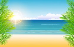 Beauty Sunny blue sky and palm tree and beach background Stock Photography