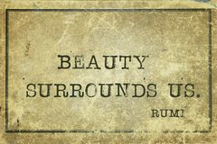 Beauty surrounds Rumi Royalty Free Stock Images