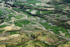 Beauty of the terraced fields viewed from a mountain peak. Stock Photography