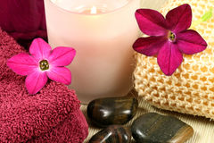 Free Beauty Therapy Stock Photos - 12023093