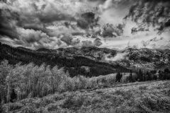 Beauty on Top BW. Autumn colors under stormy sky's in the Wasatch mountains in Utah USA over looking the mountains around Brighton ski resort Stock Photography