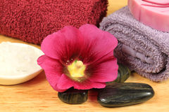 Beauty treatment in spa. Beauty and wellness treatment in spa. Holyhock flower, massage stones and other care tools Stock Images