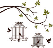 Beauty tree silhouette with birds flying and bird in a cage