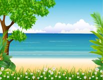 Beauty tropical forest with beach background Royalty Free Stock Image