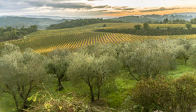 The beauty of the Tuscany Region in Italy II stock photo