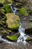 Beauty waterfall. Royalty Free Stock Image