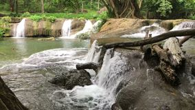The beauty of the waterfall. And the moisture of the trees in the rainy season stock video
