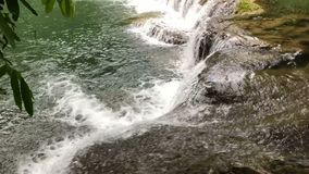 The beauty of the waterfall. And the moisture of the trees in the rainy season stock footage