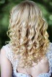 Beauty wedding hairstyle Stock Image