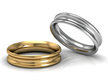 The beauty wedding ring Royalty Free Stock Images