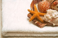 Beauty and wellness. Beauty, wellness, spa concept - white towel with seashells, with copy space Stock Images