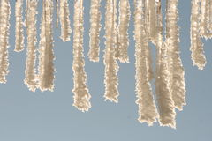 Beauty of the winter. Icicle on the roof, blue sky in the background Royalty Free Stock Photo