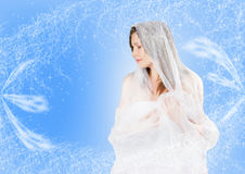 Beauty in winter Stock Image