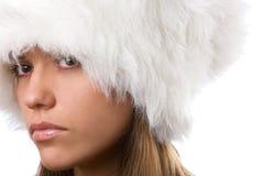 Beauty winter Royalty Free Stock Image