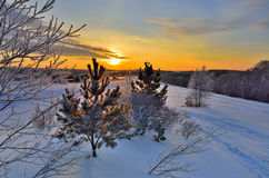 A beauty of winter rural  landscape Stock Images