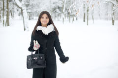 Beauty winter woman Royalty Free Stock Photography