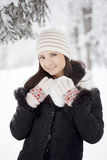 Beauty winter woman Stock Photos