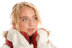 Beauty winter woman Royalty Free Stock Image